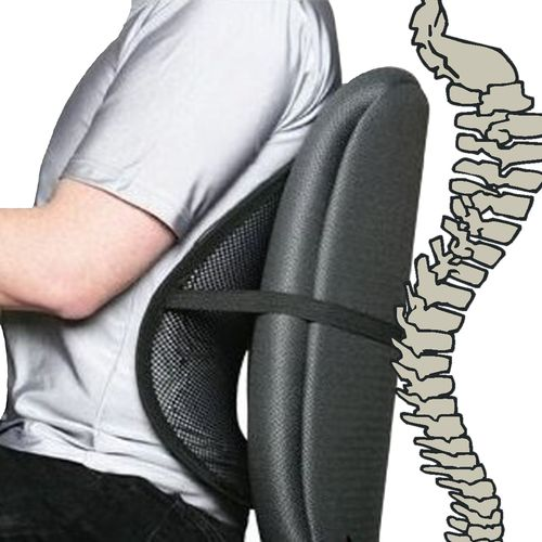 Mesh Lumbar Support